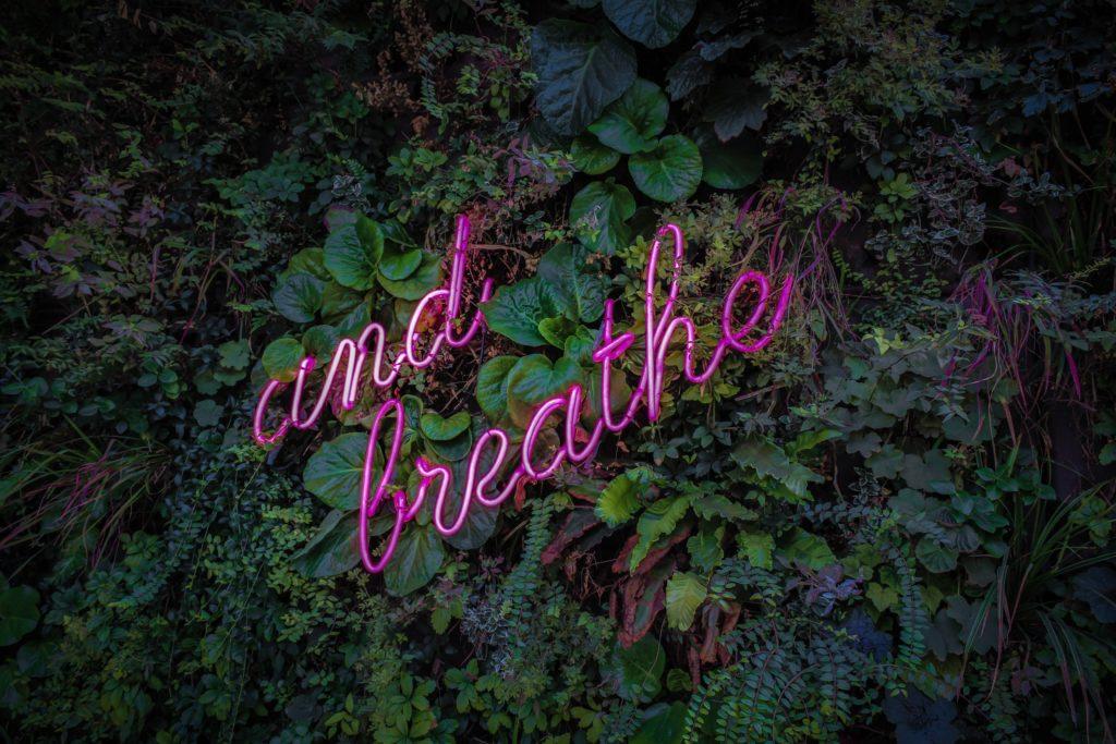 breath meditation