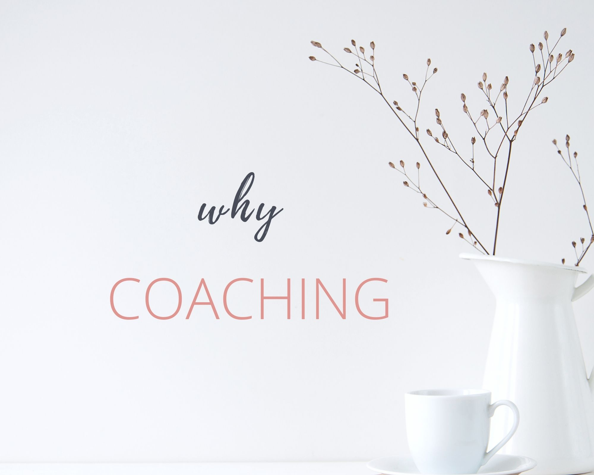 why coaching image