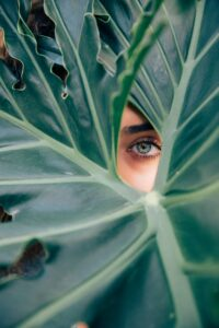 focus, emotions, mindfulness